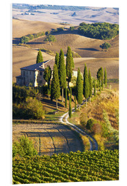 Forex  Belvedere House in San Quirico - Terry Eggers