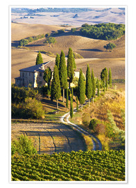 Poster  Belvedere House in San Quirico - Terry Eggers