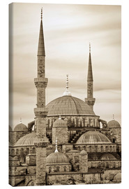 Stampa su tela  the blue mosque in sepia (Istanbul - Turkey) - gn fotografie