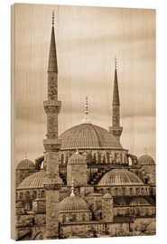 Legno  the blue mosque in sepia (Istanbul - Turkey) - gn fotografie