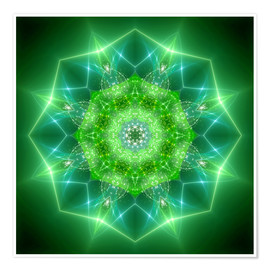 Dolphins DreamDesign - mandala healing power