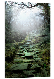 Forex  mystical stairs - Nadine Conrad