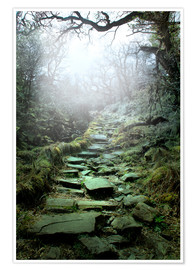 Poster  mystical stairs - Nadine Conrad