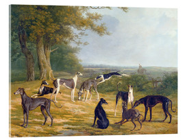 Stampa su vetro acrilico  Nine Greyhounds in a Landscape - Jacques Laurent Agasse