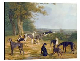 Stampa su alluminio  Nine Greyhounds in a Landscape - Jacques Laurent Agasse