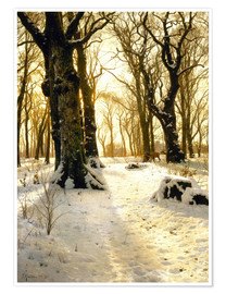 Poster Premium Winter forest with deer