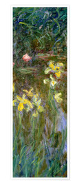 Poster Premium  Yellow lilies - Claude Monet