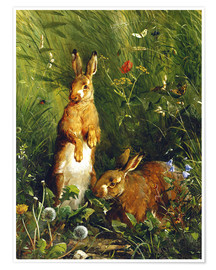 Poster Premium  Rabbits in a meadow - Olaf August Hermansen