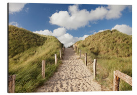 Stampa su alluminio  Sylt, path through dunes - Markus Lange