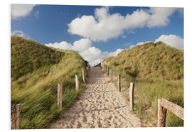 Forex  Sylt, path through dunes - Markus Lange