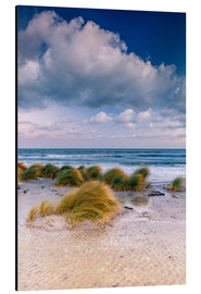 Stampa su alluminio  Baltic shore magic morning - Sascha Kilmer