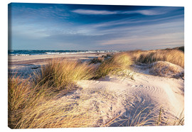 Stampa su tela  Sand Dunes at the Beach - Sascha Kilmer