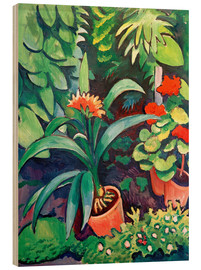 Stampa su legno  Flowers in the Garden, Clivia and Pelargoniums - August Macke