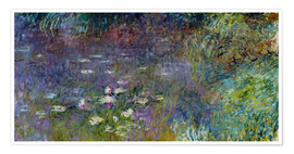 Poster  Les Nympheas - Claude Monet