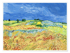 Poster Premium Fields with Blooming Poppies
