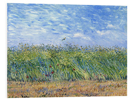 Forex  Corn field with poppies and partridge - Vincent van Gogh