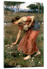 Stampa su vetro acrilico  Narciso - John William Waterhouse