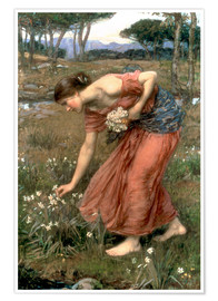 Poster Premium  Narciso - John William Waterhouse