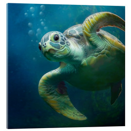 Stampa su vetro acrilico  Bubbles, the cute sea turtle - Photoplace Creative