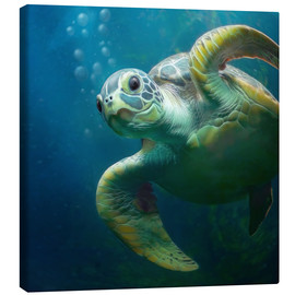 Tela  Bubbles, the cute sea turtle - Photoplace Creative