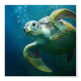 Poster Premium  Bubbles, the cute sea turtle - Photoplace Creative