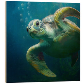 Stampa su legno  Bubbles, the cute sea turtle - Photoplace Creative