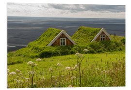 Stampa su PVC  Traditional Houses in the Skaftafell National Park, Iceland - Markus Ulrich