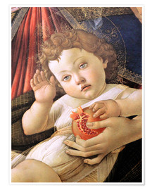 Poster Premium  Christ Child from the Madonna of the Pomegranate - Sandro Botticelli
