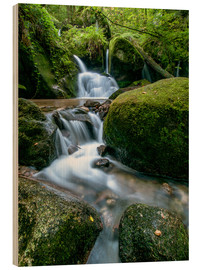 Stampa su legno  Little Waterfall in Black Forest - Andreas Wonisch