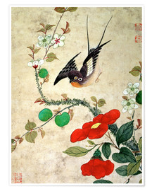 Poster Premium Bird and apples