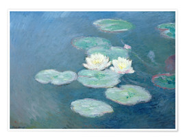 Poster Waterlilies, Evening