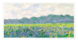 Poster Premium  Field of Yellow Irises in Giverny - Claude Monet