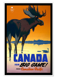 Poster Premium  Canada - big game - Travel Collection