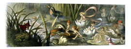 Stampa su vetro acrilico  Water-Lilies and Water Fairies - Richard Doyle