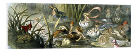 Stampa su PVC  Water-Lilies and Water Fairies - Richard Doyle