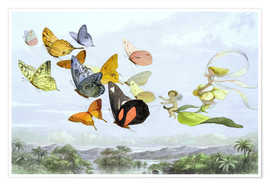 Poster Premium  The Fairy Queen's carriage - Richard Doyle