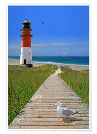 Poster Premium  The road to the lighthouse by the sea - Monika Jüngling