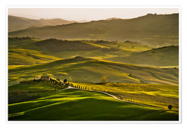 Poster Premium  Evening light in Tuscany - Andreas Wonisch