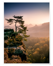 Poster Premium  Lonely Tree at Sunrise - Andreas Wonisch