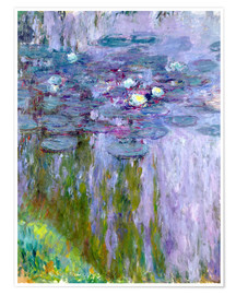 Poster Waterlilies