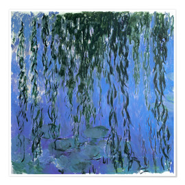 Poster Premium  Water Lilies and Weeping Willow Branches - Claude Monet