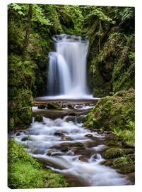 Stampa su tela  Waterfall of Geroldsau in the Black Forest - Andreas Wonisch