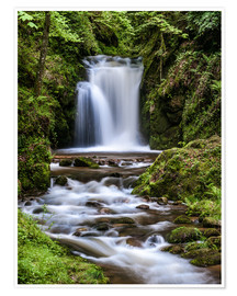 Poster  Waterfall of Geroldsau in the Black Forest - Andreas Wonisch