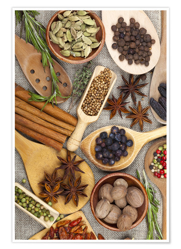 Poster Premium Spices and Herbs II
