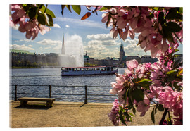 Stampa su vetro acrilico  Cherry on the Alster in Hamburg for Spring - Dennis Stracke