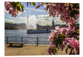 Stampa su PVC  Cherry on the Alster in Hamburg for Spring - Dennis Stracke
