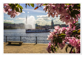 Poster Premium  Cherry on the Alster in Hamburg for Spring - Dennis Stracke