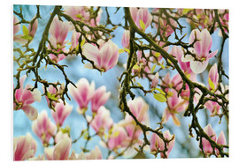 Stampa su schiuma dura  Magnolias look in the Spring - Julia Delgado