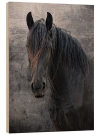 Stampa su legno  Horse with no name - Joachim G. Pinkawa