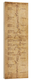Legno  Surya Namaskara The Sun Salutation(vertical) Yoga Poster - Sharma Satyakam